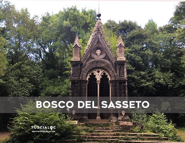BOSCO-DEL-SASSETO
