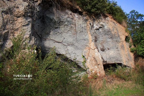 Il rozzo - Carbognano