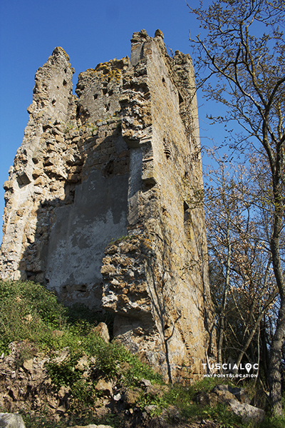 torre dell'isola conversina