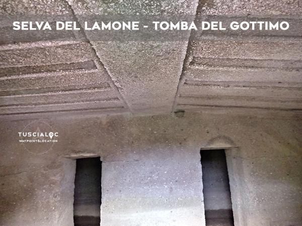 SELVA DEL LAMONE TOMBA DEL GOTTIMO